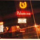 The Palomino